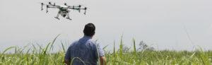 Drohne-in-der-Landwirtschaft
